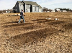 The eight garden beds after we tilled the soil.  We had a friend tell us this looked like we killed and buried eight people in our backyard... I promise that is not the case.