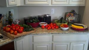 Adam took this picture last August... So many veggies!